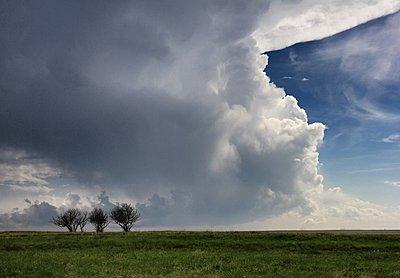 p429m1054124 von Jason Persoff Stormdoctor