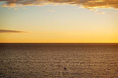 Lone kayaker  - p1125m1042664 by jonlove