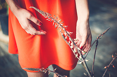 Woman touching flowering plant - p1150m1112927 by Elise Ortiou Campion