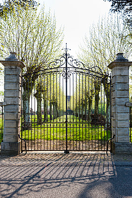 Castle gate - p248m904380 by BY