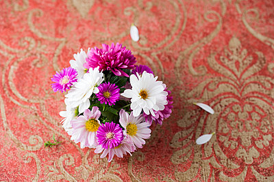 Bunch of asters and chrysanthemums - p300m1505608 by Mandy Reschke