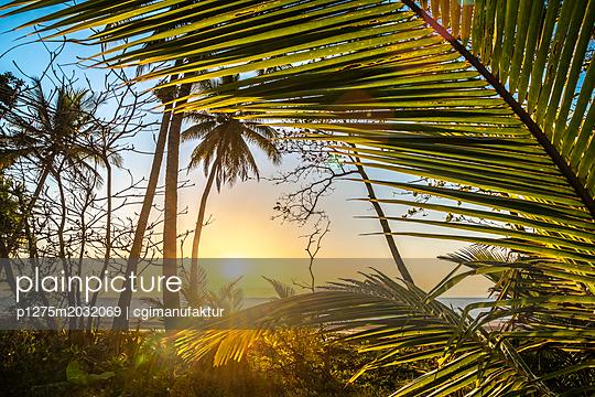 Australien Traumstrand - p1275m2032069 von cgimanufaktur