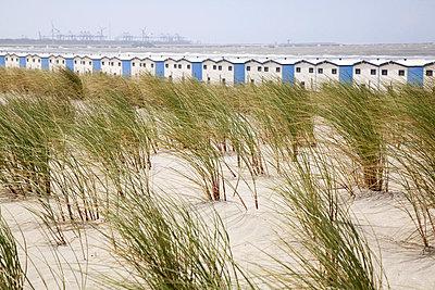 Den Helder; Netherlands - p2380265 by Anja Bäcker