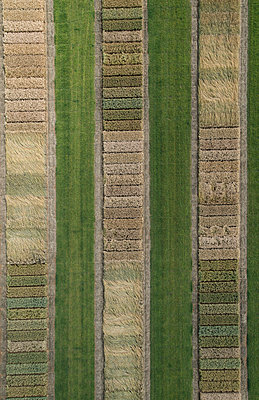 Full frame aerial view of crops in agricultural landscape, Stuttgart, Baden-Wuerttemberg, Germany - p301m1406299 by Stephan Zirwes