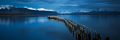 Puerto Natales - p844m1118987 von Markus Renner