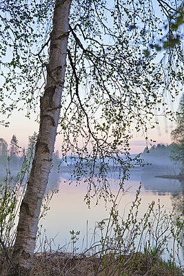Lake in Sweden - p235m972885 by KuS