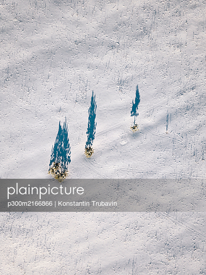 Russia, Leningrad Oblast, Tikhvin, Aerial view of bunch of trees casting shadows on snow-covered terrain - p300m2166866 by Konstantin Trubavin