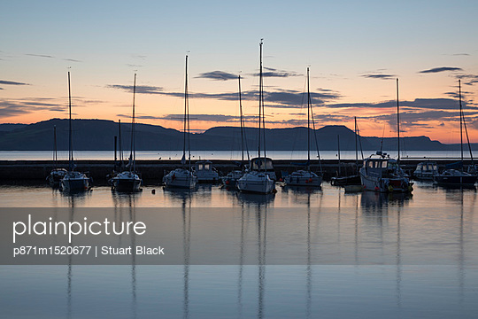 p871m1520677 von Stuart Black