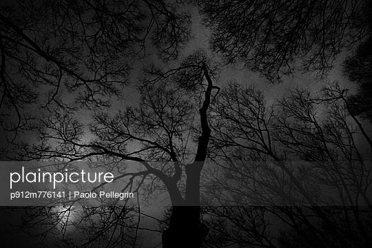 p912m776141 von Paolo Pellegrin