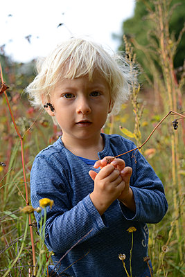 Child in meadow - p1631m2209786 by Raphaël Lorand