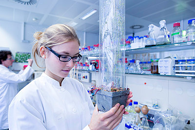 Young scientist working in a lab - p300m978968f by Sigrid Gombert