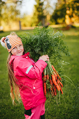 Girl holding bunch of carrots - p312m2190398 by Matilda Holmqvist