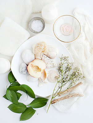 Plate with shells, plants and leaves - p429m801688 by Magdalena Niemczyk - ElanArt