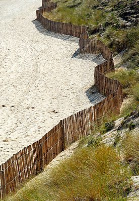 Wooden fence around the dunes - p6810058 by Sandrine Léon