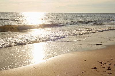Aquinnah Beach, Martha's Vineyard, Massachusetts, USA  - p694m2200724 by Maria K