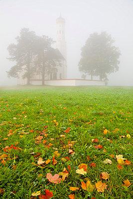 Saint Koloman Church in fog, near Fussen, Bavaria, Germany, Europe - p871m807428 by Miles Ertman