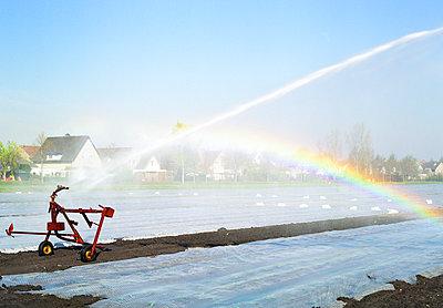 Irrigation - p1132m1017009 by Mischa Keijser