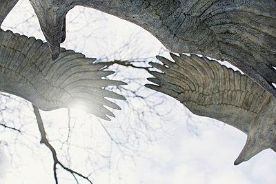 Vögel aus Stein - p877m1191045 von Julia Wagner