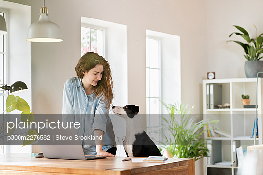 Beautiful smiling female professional looking at Jack Russell Terrier while leaning on desk in home office - p300m2276582 by Steve Brookland