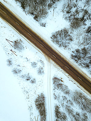 Russia, Moscow Oblast, Aerial view of bare trees surrounding empty countryside highway in winter - p300m2170476 by Konstantin Trubavin
