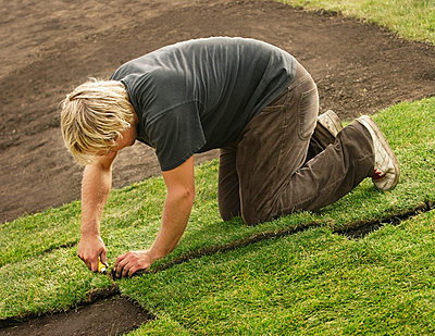A man laying sod - p4425760f by Design Pics