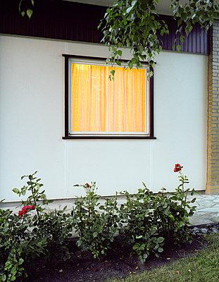 Anbau - p1060m887634 von Jens Windolf