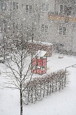 Snowflakes - p450m1207579 by Hanka Steidle