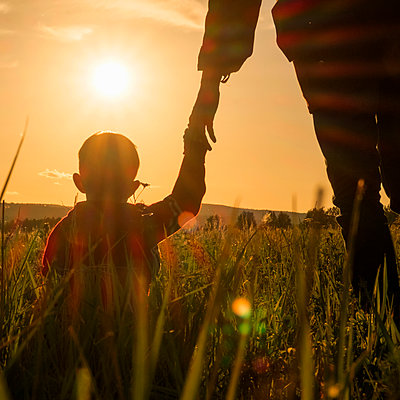 Woman and son holding hands in field at sunset - p555m1304065 by Aliyev Alexei Sergeevich