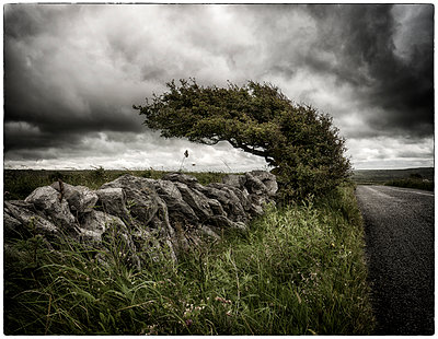County Clare - p1154m1082797 von Tom Hogan