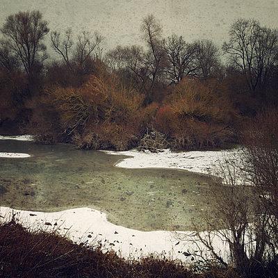 All Winter Long - p1633m2211078 by Bernd Webler