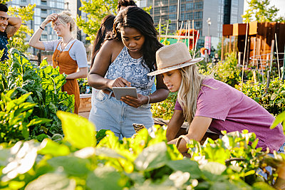 Young women friends with digital tablet in sunny, urban community garden - p1192m2130313 by Hero Images