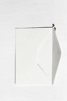 A ladybird on white envelope - p1682m2260755 by Régine Heintz