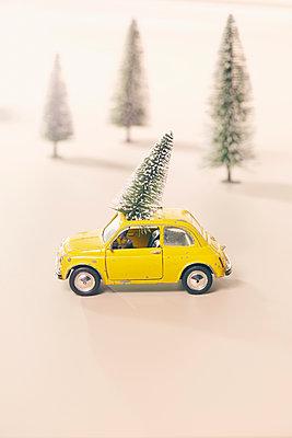Mit dem Weihnachtsbaum unterwegs - p464m1355408 von Elektrons 08
