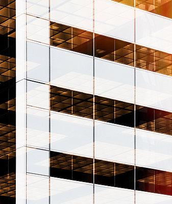 Office Windows - p1335m1362078 by Daniel Cullen