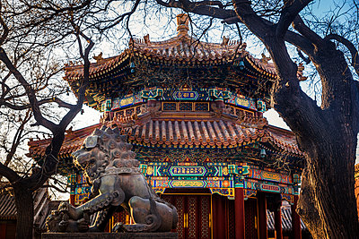Chinese Guardian Lion at Lama Temple, Dongcheng District; Beijing, China - p442m2019646 by Dosfotos