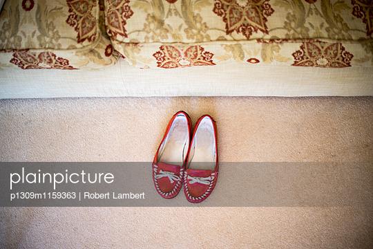 p1309m1159363 von Robert Lambert