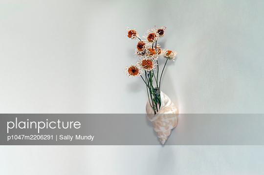 p1047m2206291 von Sally Mundy