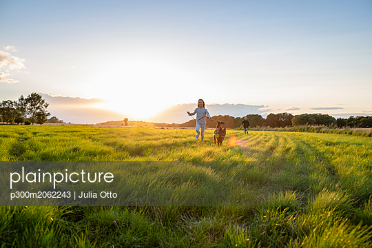 Two children with a dog running over a field at sunset - p300m2062243 by Julia Otto