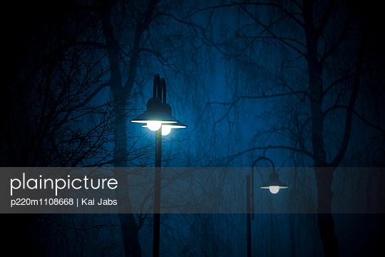 Im Nebel - p220m1108668 von Kai Jabs