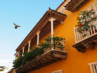 Traditional balconies in the Old Town of Cartagena - p338m1355487 by Marion Beckhäuser