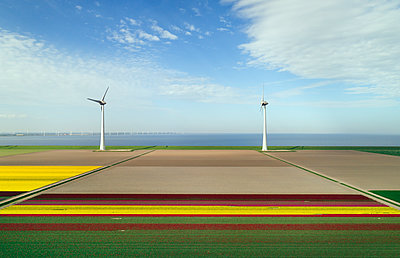 Wind farm and fields on the coast - p1132m2126179 by Mischa Keijser