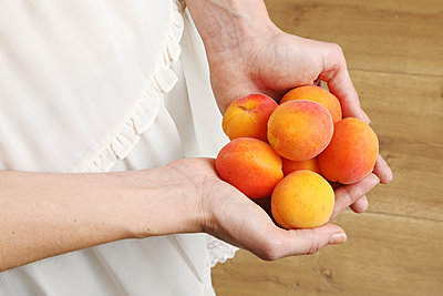 Woman's hands holding apricots  - p1540m2115760 by Marie Tercafs