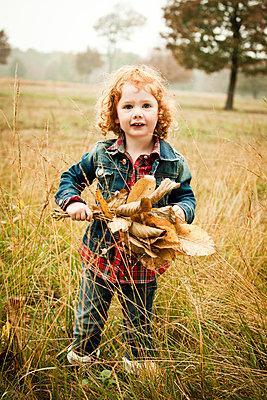Mädchen sammelt Blätter - p904m741715 von Stefanie Päffgen