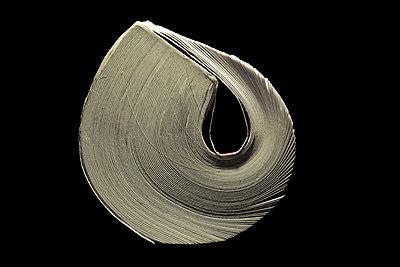 Spiral book - p1329m1172331 by T. Béhuret
