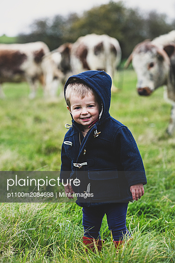 Young boy standing on a pasture, with English Longhorn cows in the background. - p1100m2084698 by Mint Images