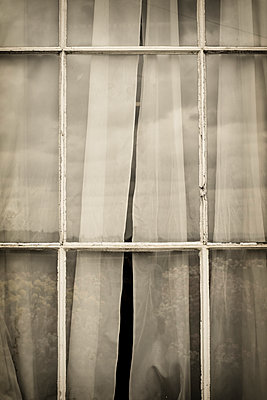 Old window - p1228m1161719 by Benjamin Harte