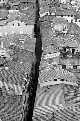 View over rooftops in Lucca in Tuscany - p3313096 by Gail Symes