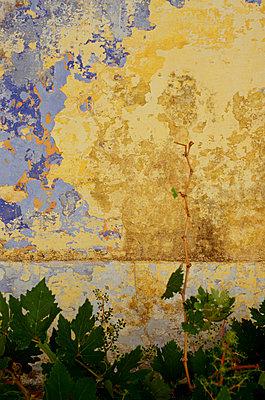Peeling Wall Symi - p8552274 by Robert OíDea