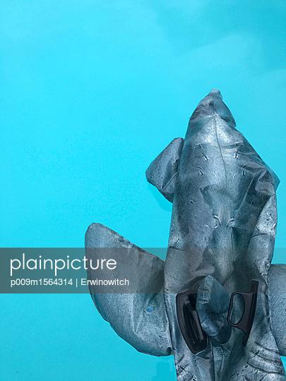 Delphin geht die Puste aus  - p009m1564314 von Erwin