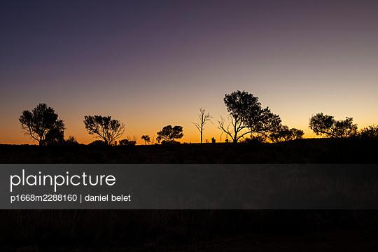 Morning mood - p1668m2288160 by daniel belet